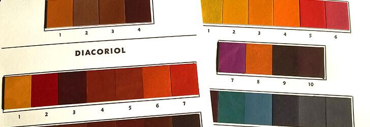 かわいい、かっこいいだけなく柔らかさと品の良さのある革の色